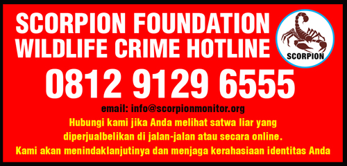 Wildlife Crime Hotline copy