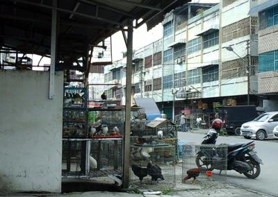 Pasar Bintang copy