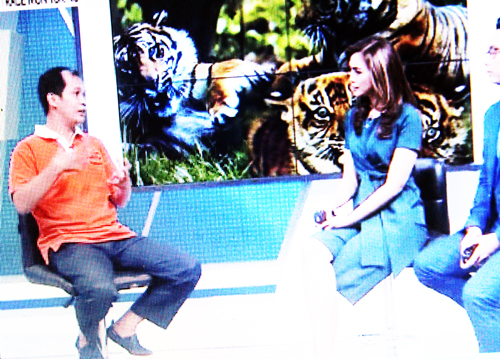 Marison Guciano in a Live Interview with KOMPAS TV: Using of Wildlife Cub for Photo Prop is a Crime (March 16, 2017)