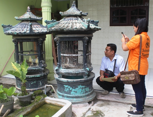 MoEF's  Wildlife Authority (BBKSDA) in  Sumatra Rescues Protected Bird from Illegal Owner (August 9, 2017)