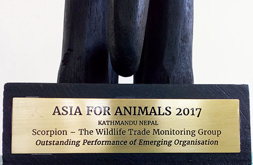 Animals Asia's Indonesian partner (Scorpion) wins prestigious award for uncovering animal abuse (December 14, 2017)