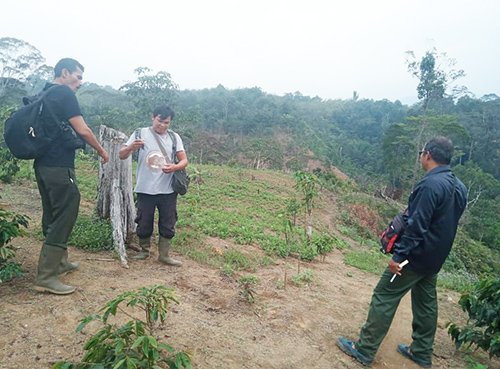 Joint Patrol for Protection of Tapanuli Orangutan in Arse Nauli (October 15, 2019)