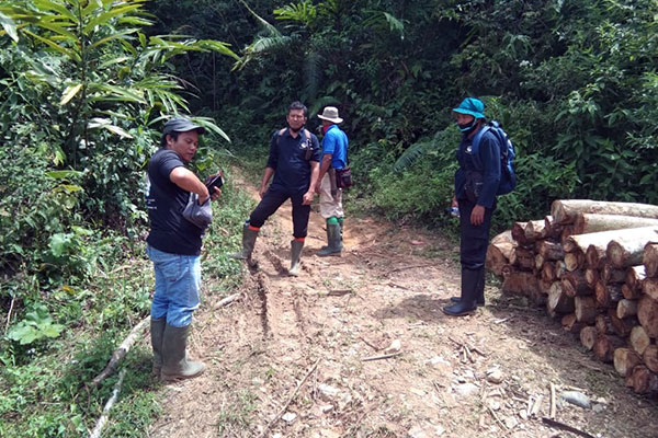 Joint Patrol in Bulu Mario: Examination of Animal Traps (October 21, 2020)