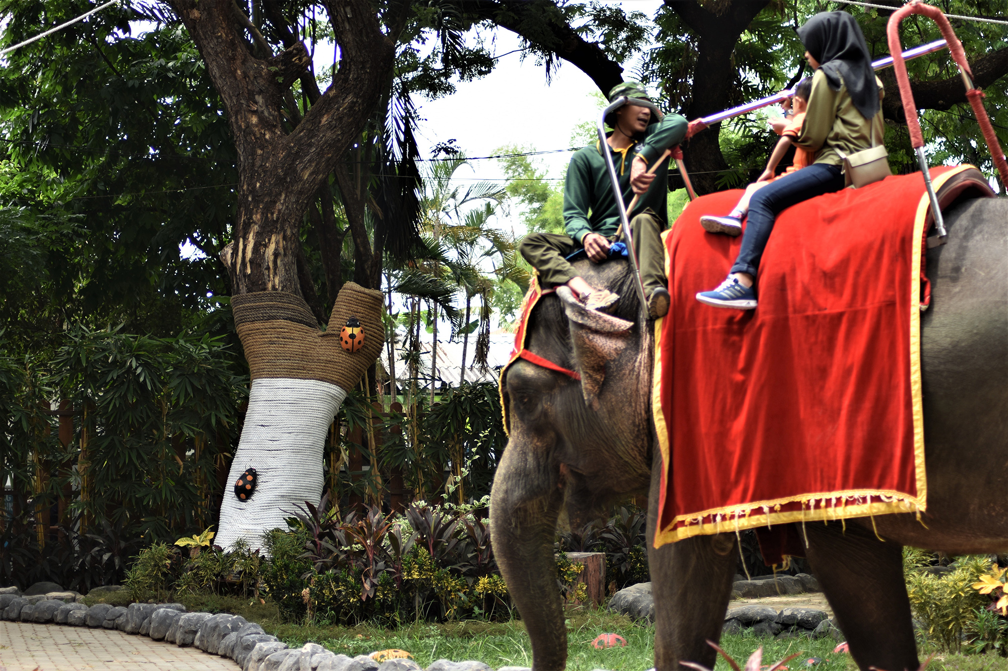 Scorpion Wildlife Trade Monitoring Group Insists an End to the Elephant Riding at the Surabaya Zoo (January  6, 2020)