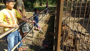 Indonesian NGO wants world's worst zoo shut down (July 29, 2015)